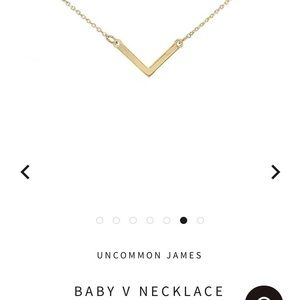 Uncommon James Necklace- Great Condition 💖